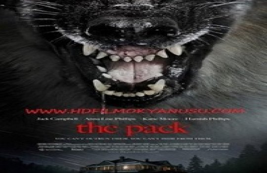 The Pack Film Fragmanı Full İzle 2015